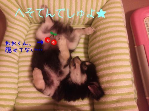 rakugaki_20130826_0003.jpg