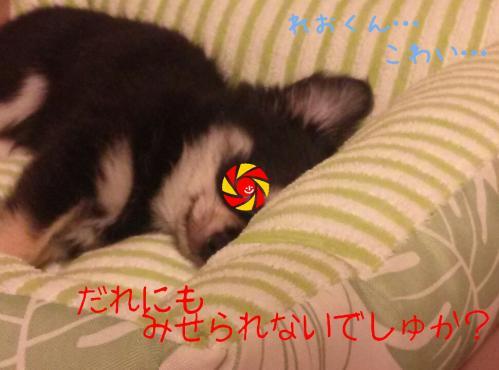 rakugaki_20130826_0004.jpg