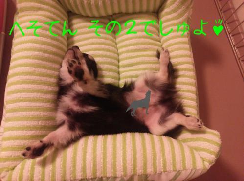 rakugaki_20130826_0005.jpg