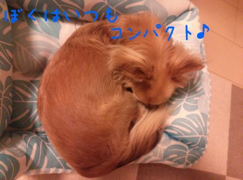 rakugaki_20130826_0007.jpg