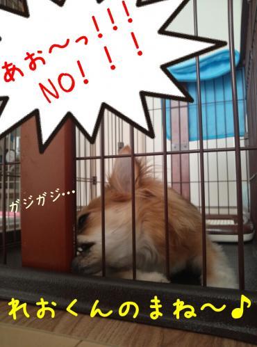 rakugaki_20130828_0001.jpg