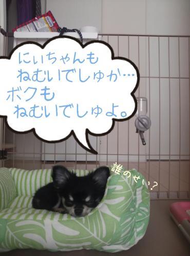 rakugaki_20130828_0003.jpg