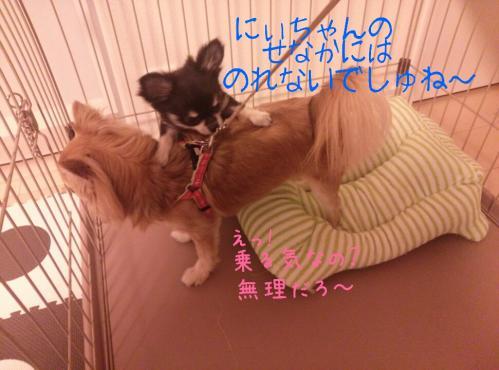 rakugaki_20130828_0010.jpg