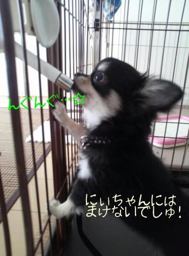 rakugaki_20130829_0003.jpg