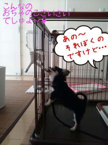 rakugaki_20130829_0005.jpg