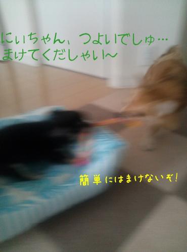rakugaki_20130830_0004.jpg