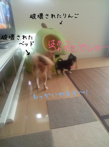 rakugaki_20130830_0006.jpg