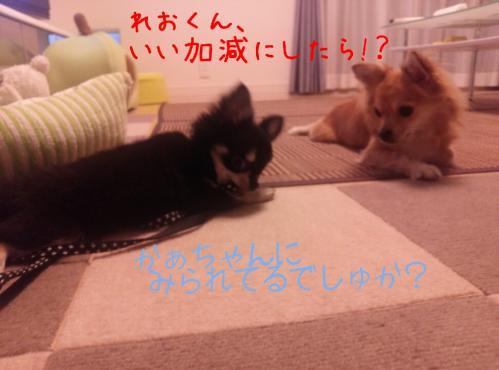rakugaki_20130830_0009.jpg