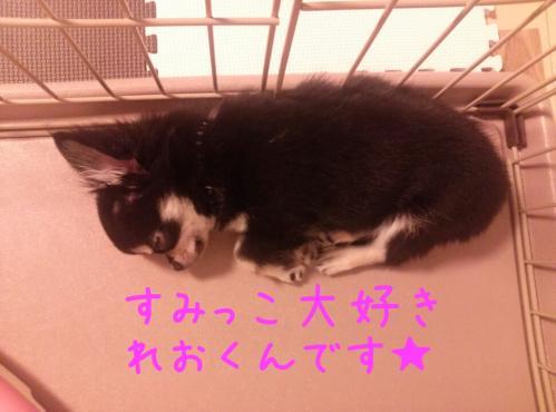 rakugaki_20130830_0011.jpg