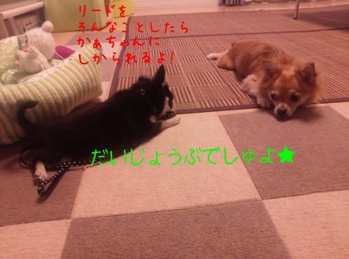 rakugaki_20130830_0012.jpg
