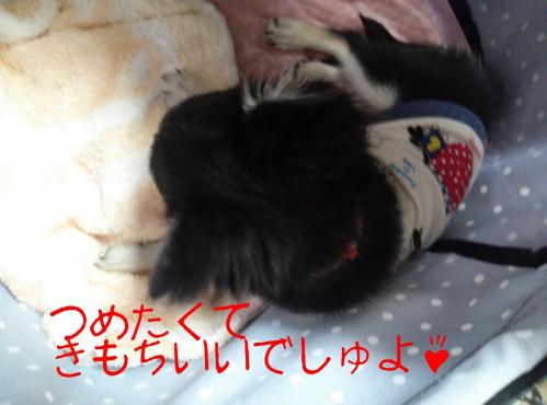 rakugaki_20130901_0003.jpg