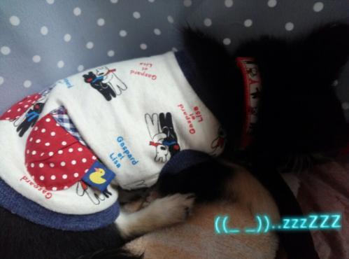 rakugaki_20130901_0004.jpg