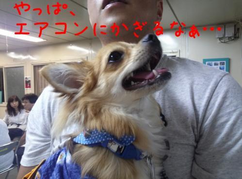rakugaki_20130901_0007.jpg