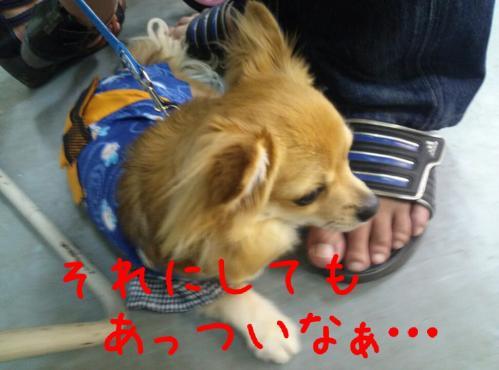 rakugaki_20130901_0008.jpg