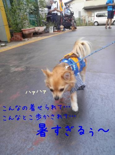 rakugaki_20130902_0001.jpg