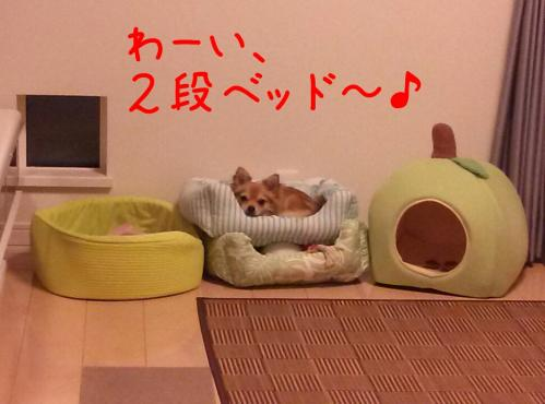 rakugaki_20130903_0001.jpg