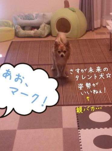 rakugaki_20130903_0002.jpg