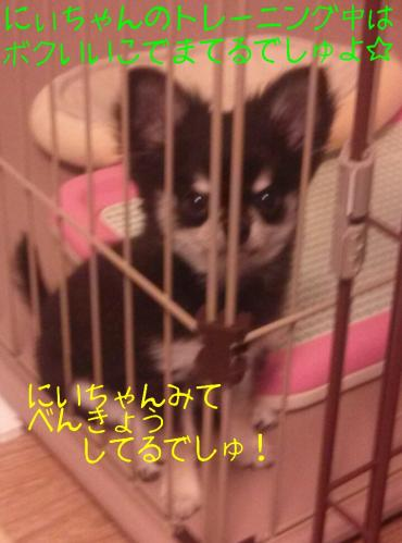 rakugaki_20130903_0003.jpg