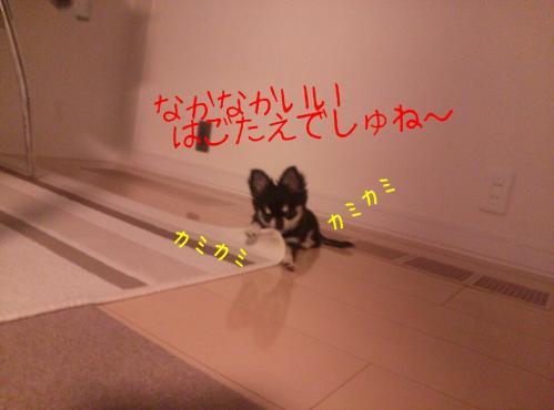 rakugaki_20130903_0004.jpg
