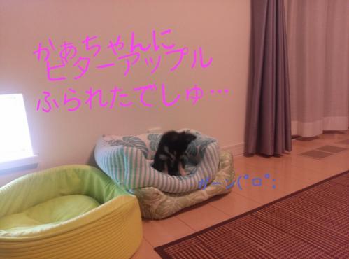rakugaki_20130903_0005.jpg