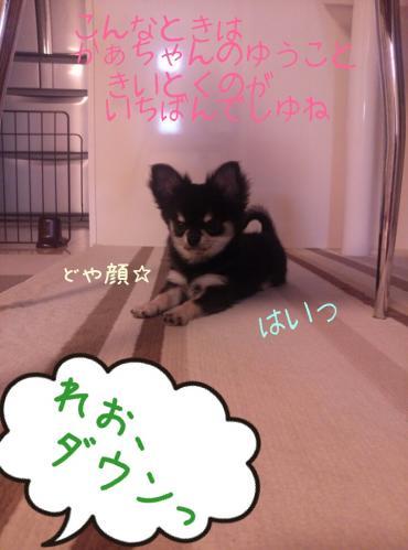 rakugaki_20130903_0006.jpg