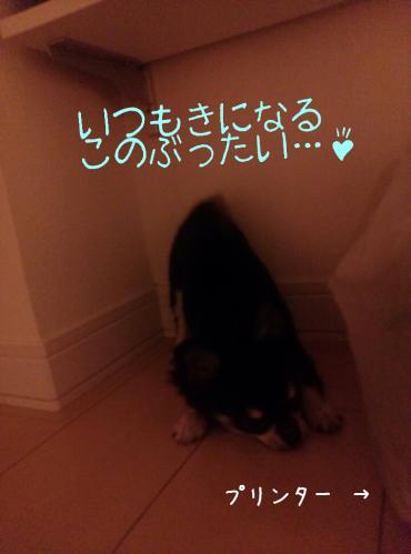 rakugaki_20130903_0008.jpg