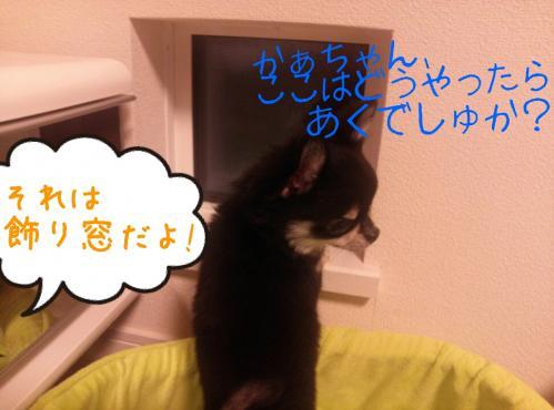 rakugaki_20130903_0012.jpg