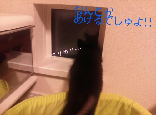 rakugaki_20130903_0013.jpg