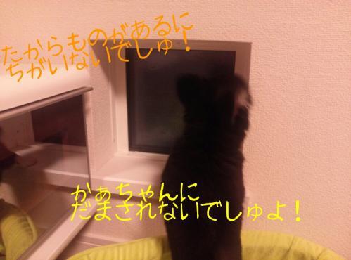 rakugaki_20130903_0014.jpg