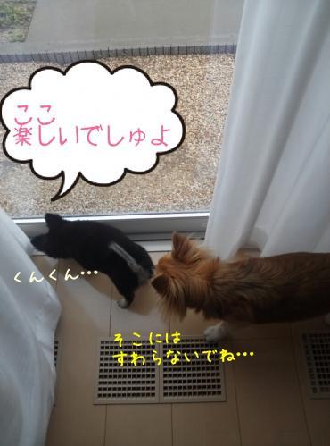 rakugaki_20130904_0004.jpg