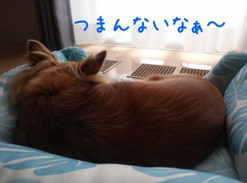 rakugaki_20130904_0010.jpg