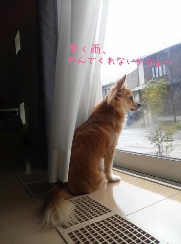 rakugaki_20130904_0011.jpg