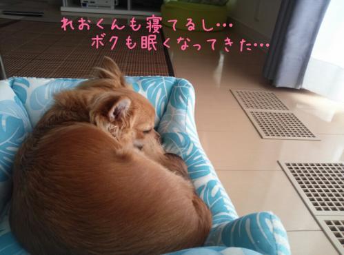 rakugaki_20130904_0012.jpg