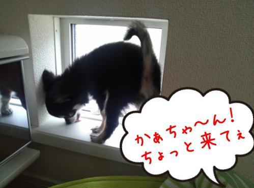 rakugaki_20130905_0001.jpg