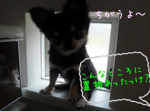 rakugaki_20130905_0002.jpg