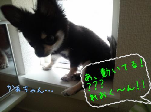 rakugaki_20130905_0003.jpg