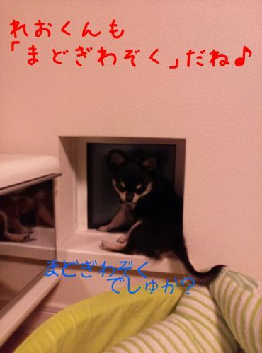 rakugaki_20130905_0004.jpg