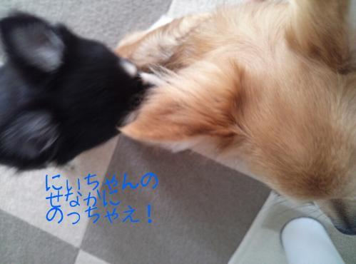 rakugaki_20130905_0007.jpg