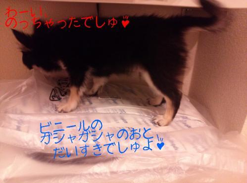 rakugaki_20130905_0009.jpg