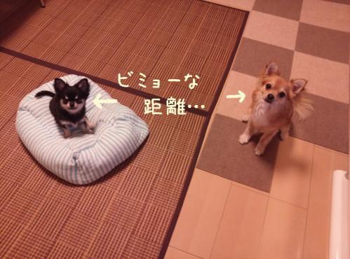 rakugaki_20130906_0003.jpg