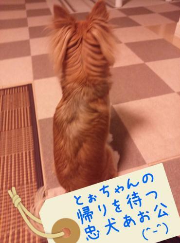 rakugaki_20130906_0004.jpg