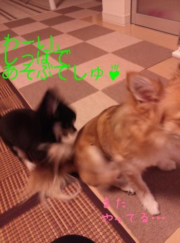 rakugaki_20130906_0006.jpg