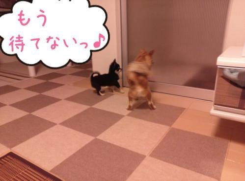 rakugaki_20130907_0001.jpg