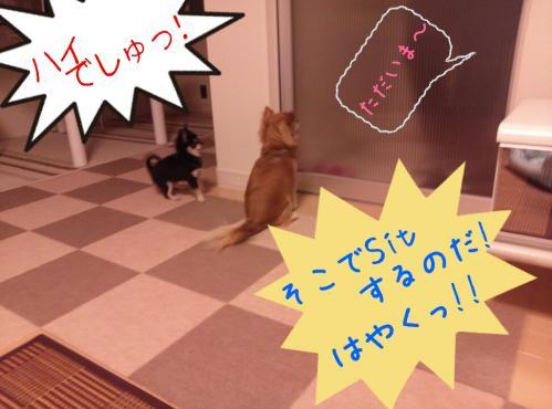 rakugaki_20130907_0002.jpg