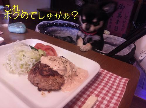rakugaki_20130907_0006.jpg