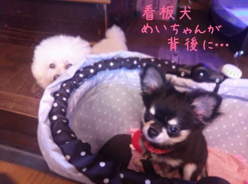rakugaki_20130907_0009.jpg