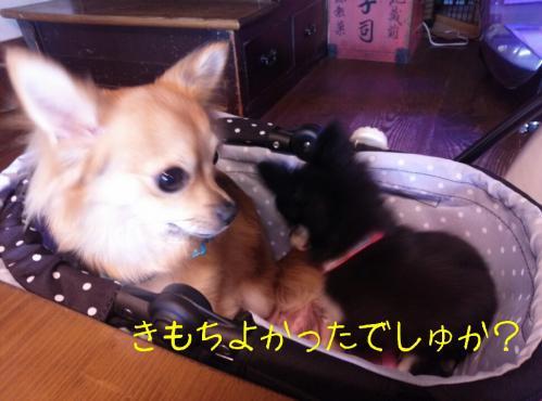 rakugaki_20130907_0013.jpg