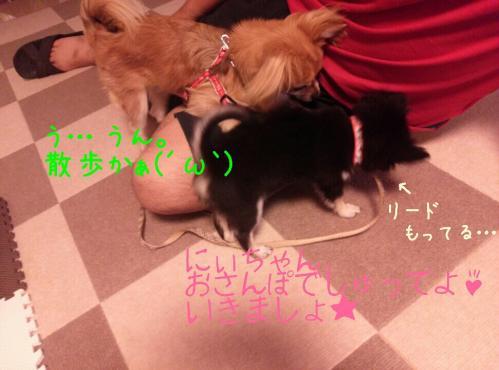rakugaki_20130908_0002.jpg