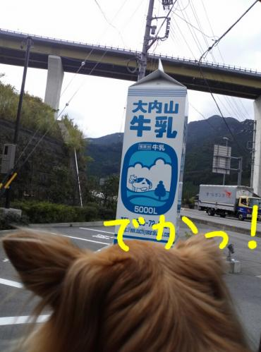 rakugaki_20130914_0003.jpg