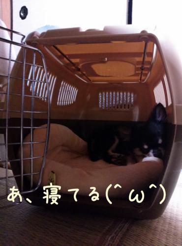 rakugaki_20130914_0014.jpg